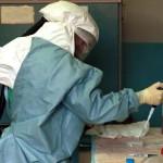 Des échantillons de sang ont été envoyés dans un laboratoire spécialisé à Atlanta, aux Etats-Unis.Tyler Hicks/Liaison