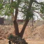 Après le déblayage du terrain, l'ex-camp fonctionnaire de Ouagadougou sera érigé  en un grand parking utilitaire.