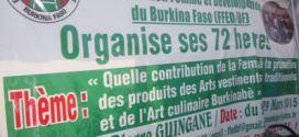 Exposition de produits d'arts vestimentaires traditionnels et culinaires à Ouagadougou du 26 au 29 mars 2015 par des femmes de la F.F.E.D-BF