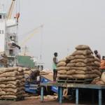 Un chargement de cacao en transit au port d'Abidjan, en 2011. AFP PHOTO/ ISSOUF SANOGO