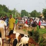 Un marché de bétail à Ouagadougou où une surenchère existe sur les prix des moutons qui atteignent le pic de 200.000 FCFA l'unité. Les moutons de 15.000 à 50.000F sont rarissimes dans la capitale burkinabè. Les citoyens à faible pouvoir d'achat  se rabattent sur les poulets dont les prix oscillent entre 3.500 à 4.500 F.(Photo:laborpresse.net)