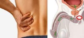 Cancer de la prostate:12 Symptômes que les hommes ne devraient pas ignorer