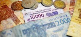 Le gouvernement français a adopté le projet de loi entérinant la fin du franc CFA