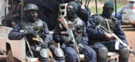 Attaque de Kangaba au Mali: qui sont les Forsat?