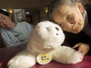 Japon: des robots infirmiers thérapeutiques pour pallier le manque de soignants