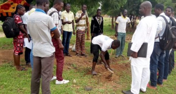 Association Wendkouni pour le Développement de l'Afrique:Des jeunes se forment aux techniques d'irrigation goutte à goutte à Ouagadougou