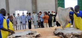 Tannerie : Une usine à Sourgoubila pour valoriser la filière cuir et peau au Burkina