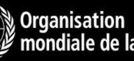Déclaration du Directeur général de l'OMS sur les recommandations du Comité d'urgence du RSI sur le nouveau coronavirus