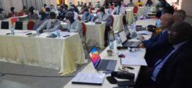Coton: un nouveau modèle économique en perspective au Burkina Faso