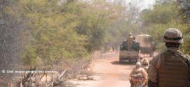 Lutte contre l'insécurité au Sahel: perspective d'un engagement de l'Algérie auprès du Mali